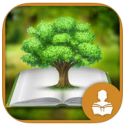 Pines To Vines - The Forest Biome