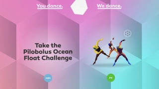 Choose from frequent challenges or free movement options.