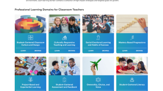 Professional Learning Domains offer strategies based on best practices.