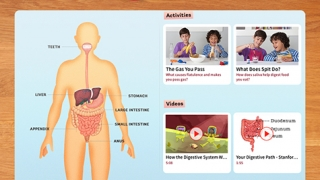 Each body system includes a brief summary, a diagram, and a set of hands-on activities and video lessons.