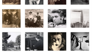 Explore images in gallery view or by taking a ten-question quiz.