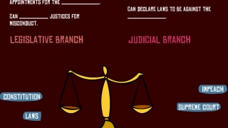 Learn about the checks and balances of the three branches of the U.S. government.