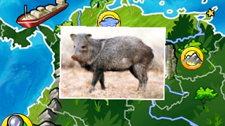 Kids can explore on their own and learn more about parts of a country.