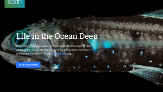 """Voyager includes such quality content as Sir David Attenborough's """"Life in the Ocean Deep"""" from BBC Earth."""