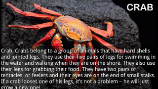 """A crab page from the nonfiction title """"Sea Animals"""" is one of 15 pages with vibrant photos and lengthy text. The word """"loses"""" is misspelled on this page."""