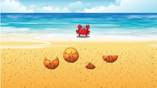 Fractions game in which kids are timed as they bring each portion of a sand dollar to its corresponding fraction