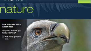 NOVA Nature features multimedia resources about our natural world.