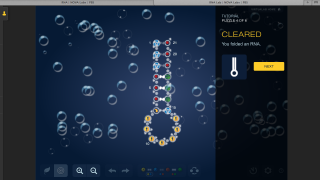 In the RNA Lab, students design RNA molecules, starting with the basics.