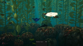 Kids tap to explore features of the kelp forest.