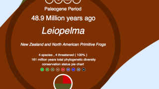 The site provides color-coded information about conservation status as well as links to additional organism details on related sites.