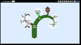The growth animation feature allows users to view changes in speciation over time; this plant example is paused in the Jurassic.