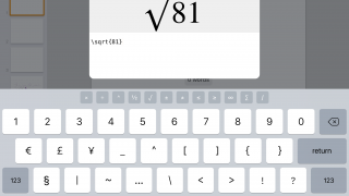 Math teachers and students can add properly formatted equations with LaTeX or MathML markup.
