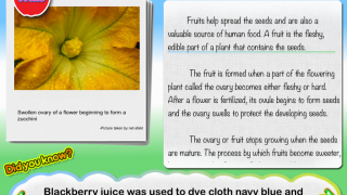 Tap through beautiful photos and fun facts as a narrator reads text-heavy portions.