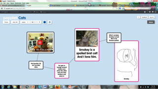 An example of a completed Popplet with text, photograph, drawing, and YouTube video