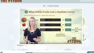 Lecture videos feature funny themes, great visuals, and well-paced instruction.