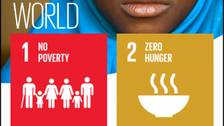 There are 17 sustainable development goals from the UN's 2030 Agenda for Sustainable Development.