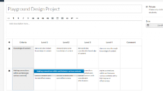 Build rubrics and assess right in the website.
