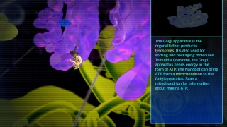 The game includes an index of cell organelles.