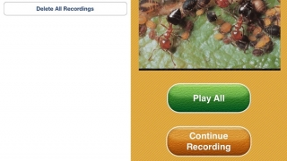 Saved recordings are accessed in the app and can be emailed as separate image and audio files.