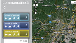 You can track your birding stats on the website, but sightings are best entered on a mobile device.