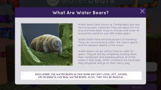 There's also a brief background on the water bear itself.