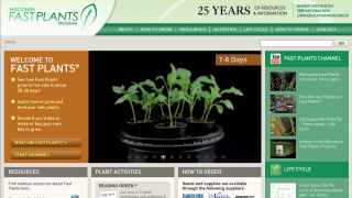 Wisconsin Fast Plants provides resources for teachers who want to use plants in classroom experiments.