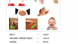 Some dictionaries do include images to support language acquisition.