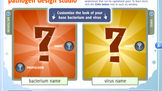 The player chooses the characteristics of the virus or bacteria.