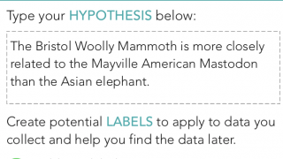 Build a hypothesis in the inquiry organizer.