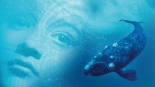 Whale Rider Movie Promotional Image
