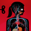 the human body by tinybop app